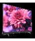 تلویزیون ال ای دی هوشمند 50 اینچ ایکس ویژن مدل 50XTU835